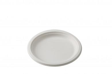 Assiettes PLA x10